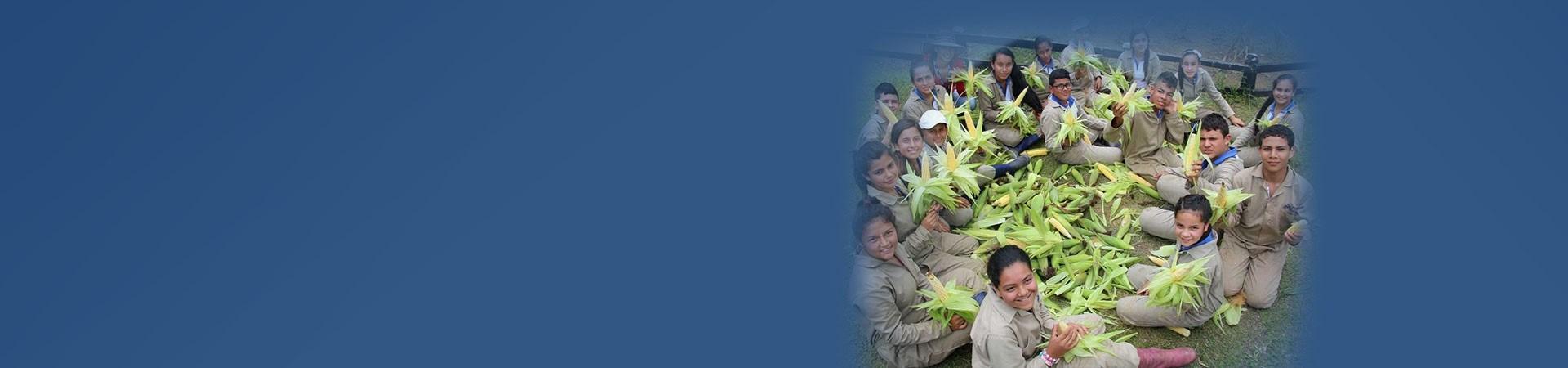 Smurfit Kappa Foundation Projects