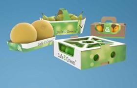 Fruit Punnets, Punnets for Fruit