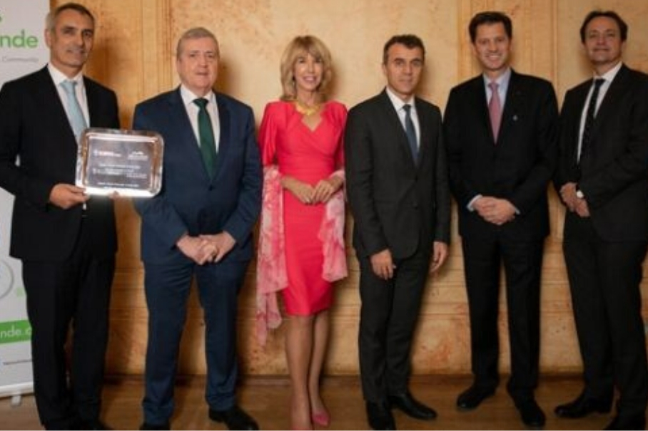 récompense meilleure entreprise irlandaise en France