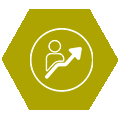 SKYPE ontwikkelprogramma