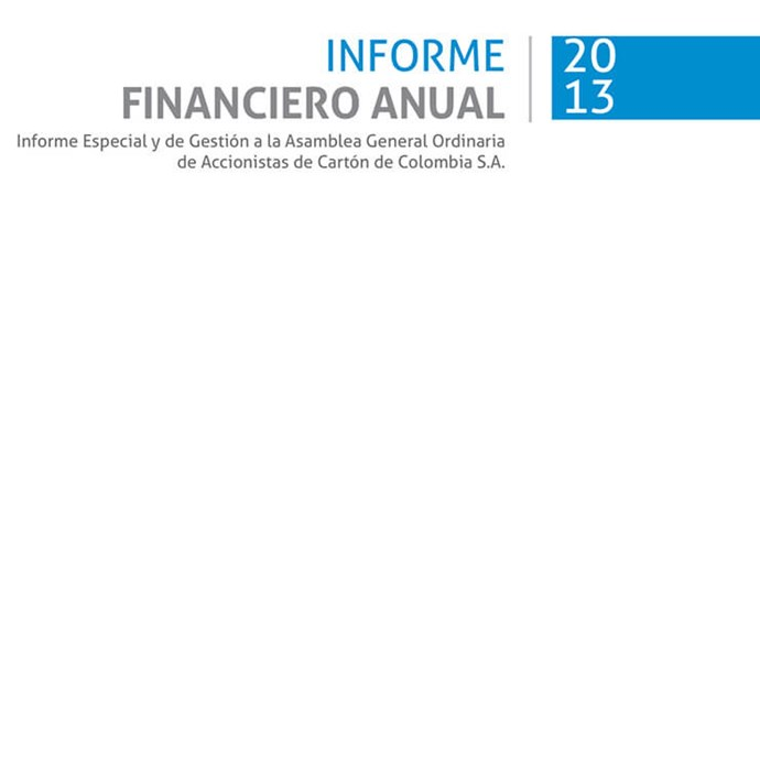 Informe Financiero Anual SKCC 2013