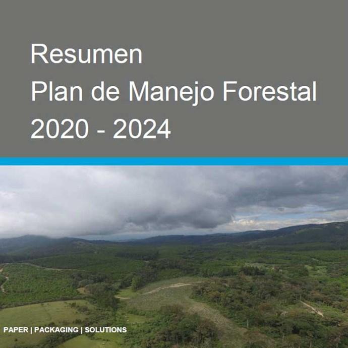 Resumen-Forest-2020---2024