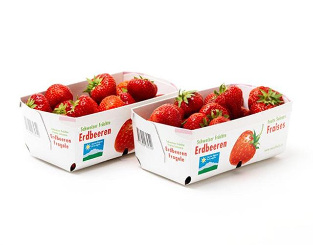 Pappschale mit Erdbeeren