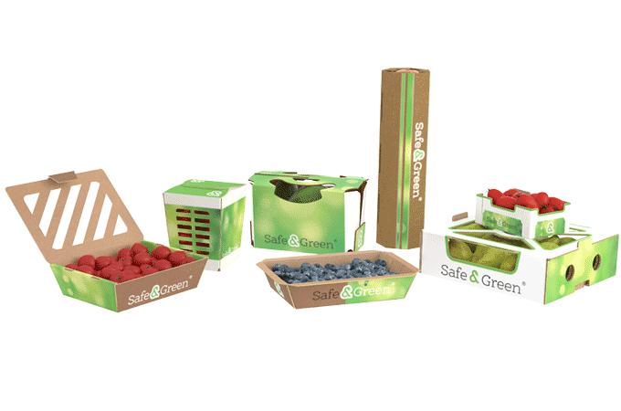 Biodegradable Punnets