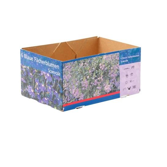 Flower_Boxes_3_min