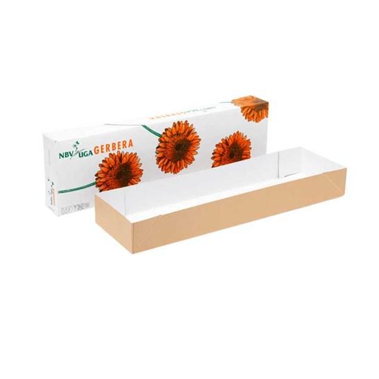 Flower_Boxes_4_min