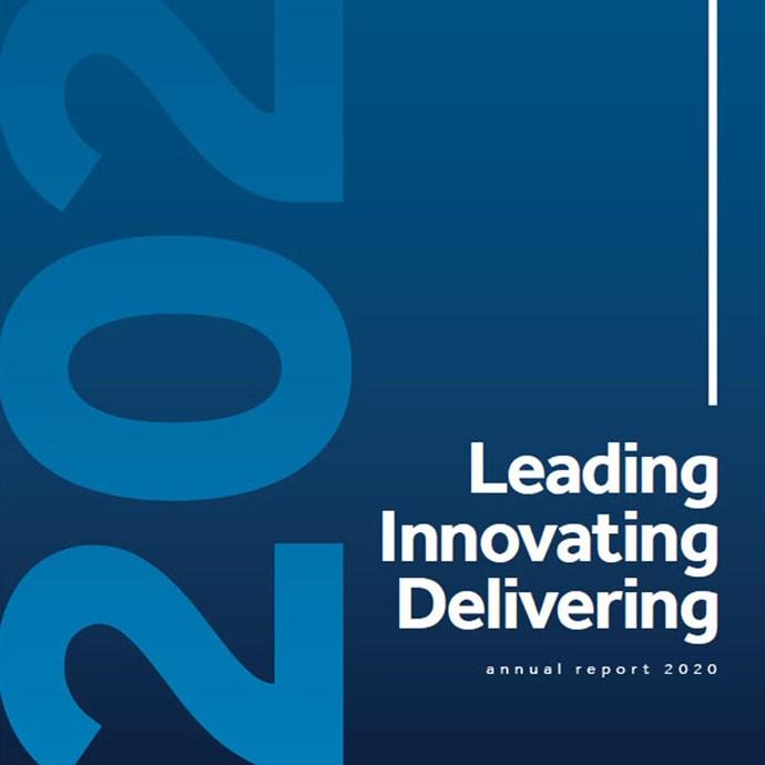 SKG Annual Report 2020