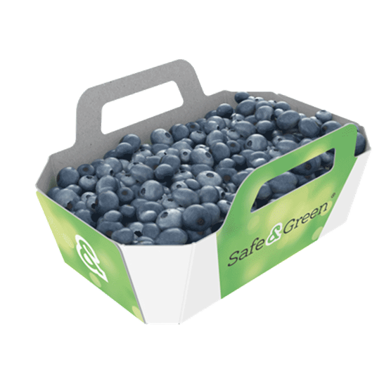 Blueberry Punnets