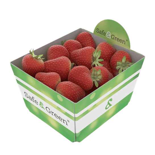 Open Strawberry Punnets