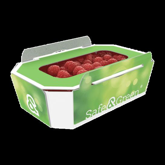 Raspberry Punnets