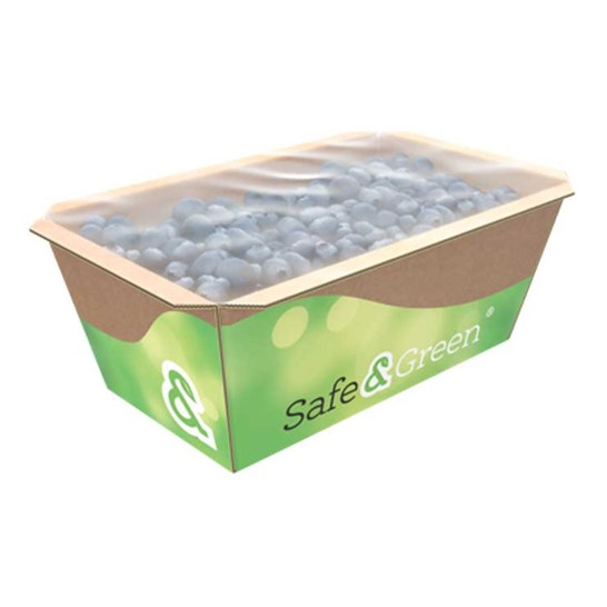 Top Sealable Punnet