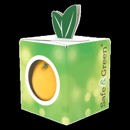 Promotion Punnets, Fruit Punnets