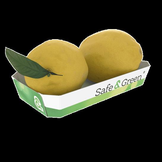Lemon punnets, Punnets for Lemons