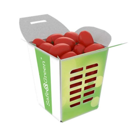 Snack Fruit Boxes