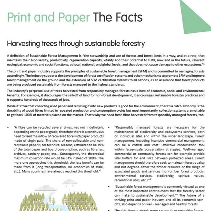 Harvesting-trees-through-sustainable-forestry