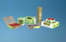 Cardboard punnets, corrugated punnets