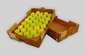 Case_Study_bohemia_apples