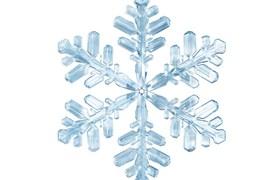 Frozen-Foods-JPG