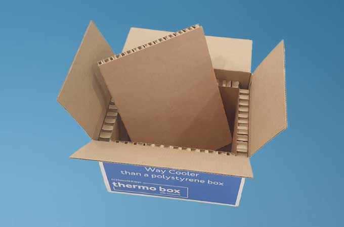 Thermobox Insulated packaging