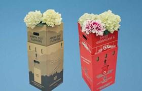 Flower packaging, Packaging for flowers
